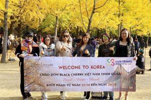 """[Hàn Quốc]: Du lịch xứ sở """"Thiên đường mỹ phẩm"""" vào mùa lá đỏ"""